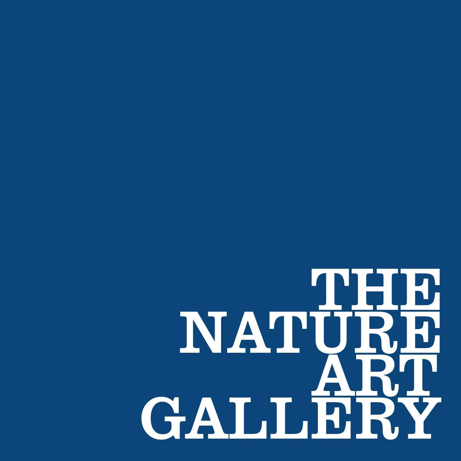 the-nature-art-gallery-a-christmas-expo